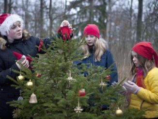 flickor klär skogsgran